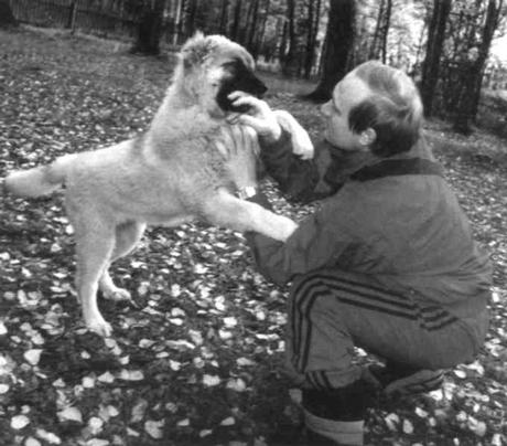 Putin, Vladimir Vladimirovich (president of Russia) Playing with dog